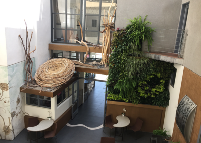 Nest Sculpture and plant painting - Hotel courtyard